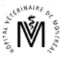 Emplois chez Hôpital vétérinaire de Montréal